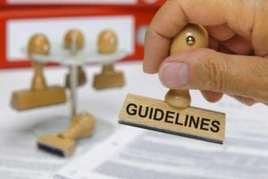 "Hand holding rubber stamp with the word ""guidelines"" on it"
