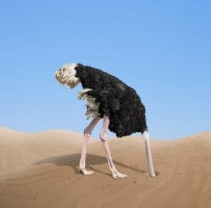 Ostrich burying it's head in the sand - I don't want to get divorced