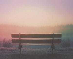 Empty park bench on a foggy day.