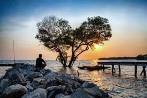 man in frustrated depression sitting alone on the rock dam extended into the sea and looking at tree in the shape of heart on sunset. the concept of lonely sadness depressed and broken heart.