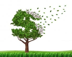 Tree with leaves in the shape of a dollar sign flying a way signifying that divorce is expensive.