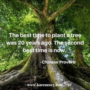 "Giant tree with big roots with Chinese proverb, ""The best time to plant a tree was 20 years ago. The sceond bet time is now."""